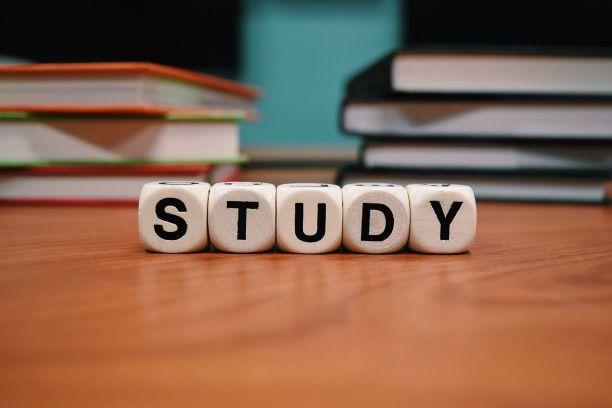 【大学受験生必見】すぐに効率が上がる3つの勉強法